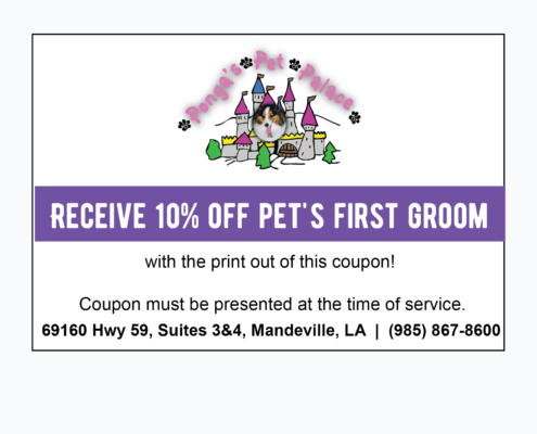 coupon   Ponga's Pet Palace Boarding, Grooming, Day Care