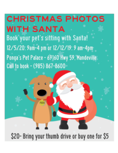 dog and Santa in flier for photos with your pet and Santa | Ponga's Pet Palace pet grooming and boarding