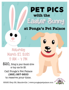 flier with Easter Bunny and a dog for pet photos
